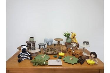 Safari 14544